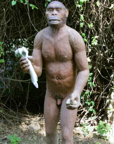 Homo erectus emerges from sex dungeon cave in southern France.