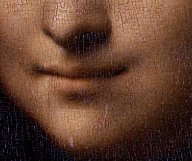 Leonardo da Vinci's famous painting Mona Lisa has a sly, suggestive smile.
